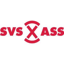 SVS_Steinmann